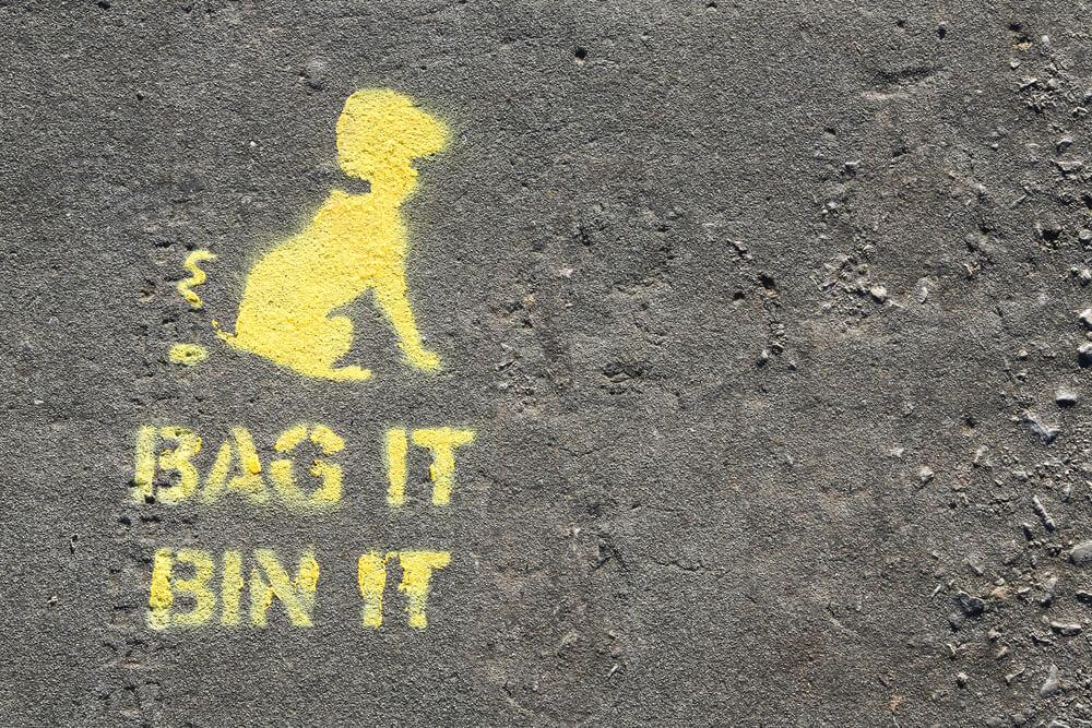 Ekologiczne sprzątanie po swoim psie